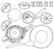 Tea hand draw set - teapot, cup and spoon with lemons, limes. Isolated collection on white background Royalty Free Stock Images