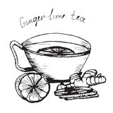 Tea 1. Hand draw sketch. Illustration cup of tea with lime and ginger. Pencil drawing stock illustration