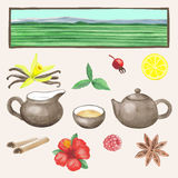 Tea hand drawn watercolour set Stock Image