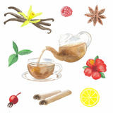 Tea hand drawn watercolour set Royalty Free Stock Photography