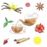 Tea hand drawn watercolour set Royalty Free Stock Photography