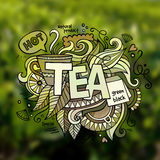 Tea hand lettering and doodles elements Royalty Free Stock Image