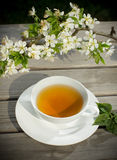 Tea of healthy herb Royalty Free Stock Photo