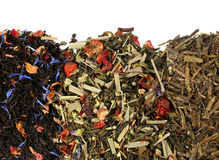 Tea herb mix. Tea herb variation mix closeup on white stock image