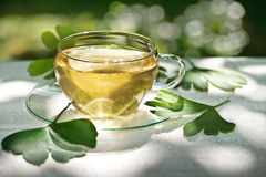 Tea with herbaceous plant Stock Photos