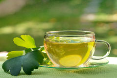 Tea with herbaceous plant Stock Photo