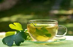 Tea with herbaceous plant Stock Image