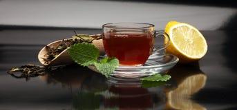 Tea. Herbal tea. Mint leaf. Tea in a glass cup, mint leaves, Stock Image