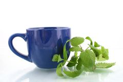 Tea with herbs Royalty Free Stock Photo