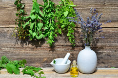 Tea herbs wood background Royalty Free Stock Images