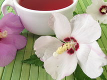 Tea with hibiscus flowers Royalty Free Stock Photo