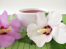 Tea with hibiscus flowers. Cup of tea with hibiscus flowers Royalty Free Stock Photo