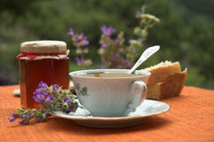 Tea and honey. With nature background Royalty Free Stock Image