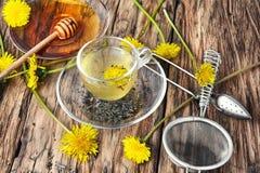 Tea with honey dandelion. Cup of medicinal tea with honey dandelion Stock Photography