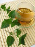 Tea with honey melon sage Stock Photography
