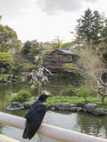 Tea House and crow, Imperial Palace, Kyoto Royalty Free Stock Image