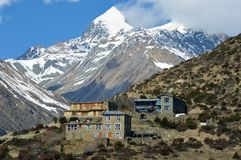 Tea houses on the edge of a mountain side, on the Annapurna circuit. With the snow capped mountains of the Himalayas behind.  royalty free stock image