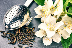 Tea infuser spoon with dry green tea leaves and jasmine flowers Stock Images