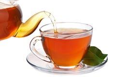 Tea isolated Stock Photography