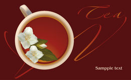 Tea with jasmin Stock Photography