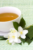 Tea of jasmine Stock Image