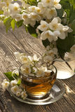 Tea and jasmine Stock Photography