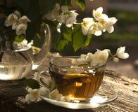 Tea and jasmine Stock Photo