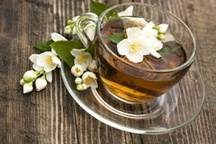 Tea and jasmine Stock Images