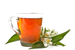 Tea with Jasmine Stock Image