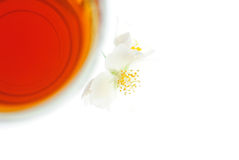 Tea with jasmine flower, top view Stock Images