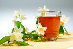 tea with jasmine flowers Stock Image