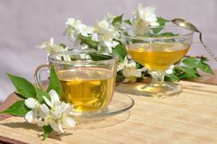 Tea with jasmine and honey bee Royalty Free Stock Photo