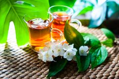 Tea with jasmine. Two cups of tea. On a natural background of green leaves with jasmine flowers royalty free stock image