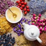 Tea kettle of healthy tea, tea cup and healing herbs Royalty Free Stock Photography