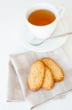 Tea kuper och sädes- kakor Fotografering för Bildbyråer