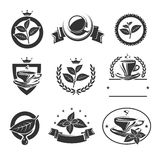 Tea labels and icons set. Vector Stock Photography