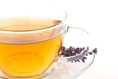 Tea of lavender Stock Photos