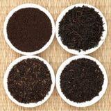 Tea Leaf Sampler stock images