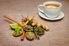 Tea leafs in wooden spoons with lime, ginger and cup with ginger. Tea on the table royalty free stock photos