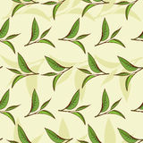 Tea leaves pattern Stock Photo