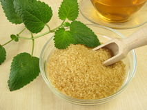 Tea with lemon balm and raw cane sugar Stock Image