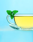 Tea with lemon balm Royalty Free Stock Images