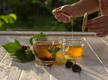 Healthy breakfast concept. Tea with lemon, berries and honey royalty free stock photography