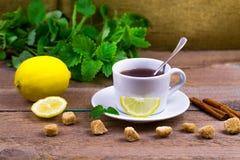 Tea with a lemon, cinnamon, a melissa and cane sugar stock photography