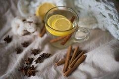 Tea with lemon and cinnamon, star anise, winter, warm against the disease Stock Photos