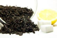 Tea with lemon and sugar. Dry tea leaves, yellow lemon fruit and sugar cubes Royalty Free Stock Photo