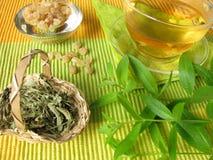 Tea with lemon verbena. A cup of tea with lemon verbena Royalty Free Stock Photos