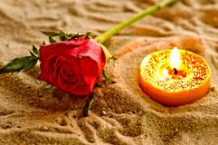 Tea light with rose Stock Photography