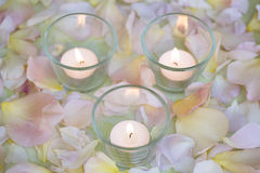 Tea lights burning on a background of rose petals Stock Photos