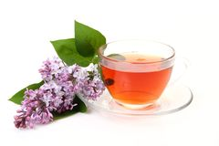Tea and lilac Royalty Free Stock Images